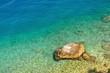 Amazing beach in adriatic sea with big stone. Podgora, Croatia