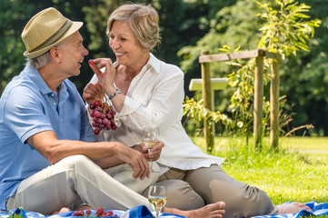Senior couple having picnic