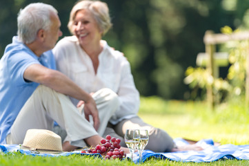 Senior couple on a picnic on grass
