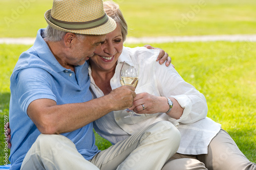 Senior couple clinking glasses on picnic