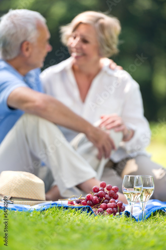 Senior couple on a picnic in the park