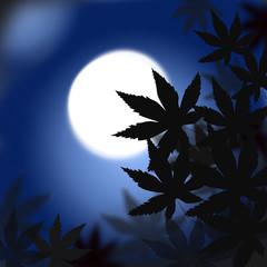 月夜と鵜飼