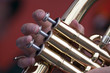 Three Fingers on the keys of a brass wind instrument