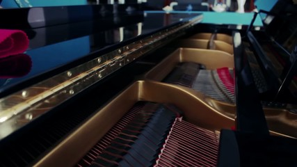 INSIDE GRAND PIANO DOLLY