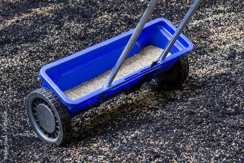 Rasen - Samen streuen - 54566561