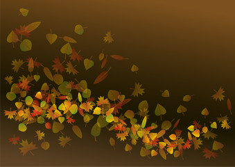 Colorful autumn leaves background illustration