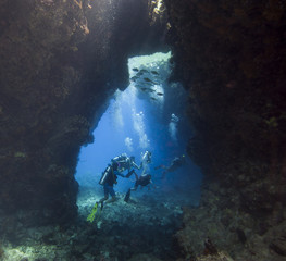 Scuba divers in an underwater cavern
