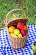Picnic basket outdoor