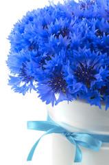 Bunch of blue vivid exotic flower of cornflower