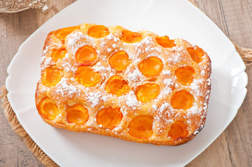 Sponge cake with apricots sprinkled with powdered sugar