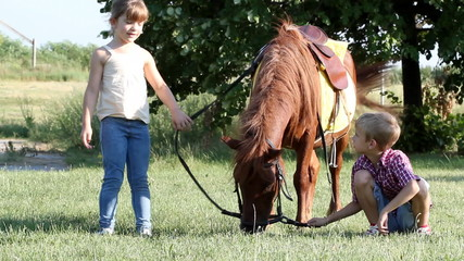 children play with pony horse