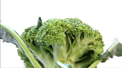 Close up broccoli on white background