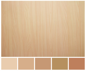 Seamless wood texture with colored palette guide for design work
