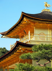 close up Kinkakuji Temple roof and gold bird on top, Japan