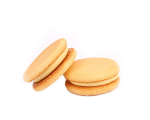 Biscuit sandwich with white filling. Close up.