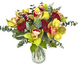 Fototapety bouquet of orchids  in vase on white background