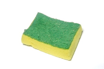 yellow green sponge