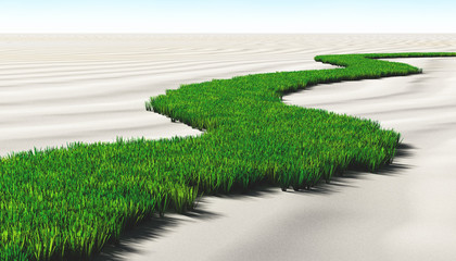 grassy path on the sand