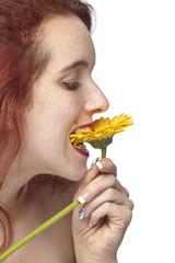 Frau beißt in eine gelbe Gerbera