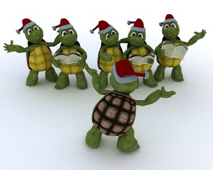 tortoises singing christmas carols