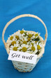 Get well card on mini wicker basket full of chamomile flowers