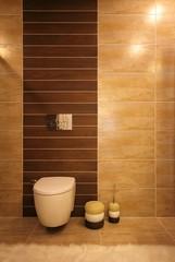Stylish toilet design