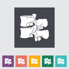 Anatomy spine flat icon.
