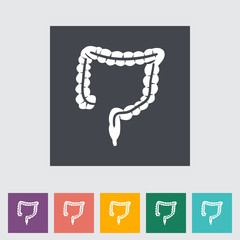 Intestines flat icon.