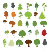 Forest trees vector collection - 54617540