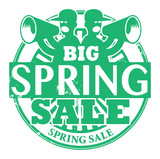 Stamp with the words Big Spring Sale written inside