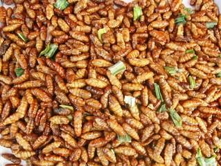 Silk worm fried, Thai amazing food