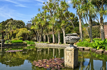 Pond and trees in Logan Botanic Gardens