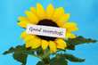 Good morning note on sunflower with blue background