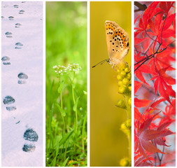 Four seasons collage: Winter, Spring, Summer, Autumn.