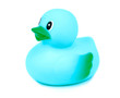 Blue rubber duck on white background