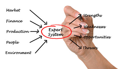 Diagram of expert system