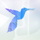 Colorful hummingbird, abstract symbol illustration