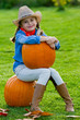 Harvest of pumpkins, lovely girl and large pumpkins
