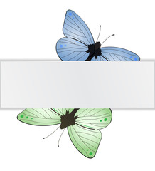 Two butterflies under the white paper tab