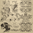 Vintage vector decorative elements for design