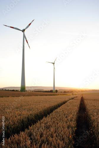 canvas print picture Windpark und Getreide im Sommer