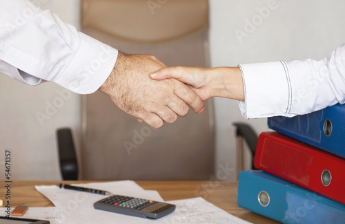 Handshake betwwen a businessman and a business woman