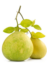 Two Green pomelo fruit on white Backgorund