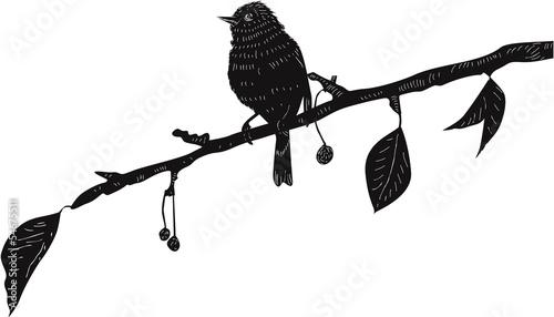 Bird on the branch © abeadev