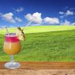 cocktail de bienvenue à la campagne