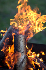 Log on fire with flames