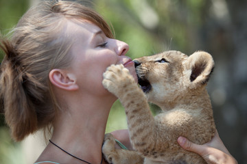 Little lion cub biting girl playing
