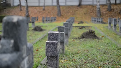 military graveyard rows of crosses