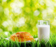 Fresh cinnamon bun and glass of milk on nature background
