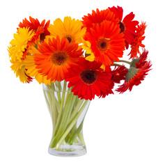 gerbera flowers in glass vase